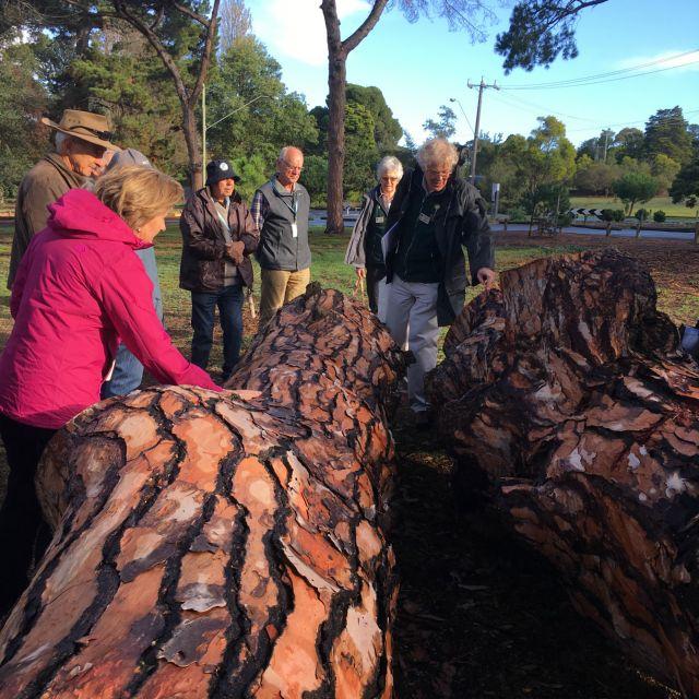 The Guides - Friends Geelong Botanic Gardens